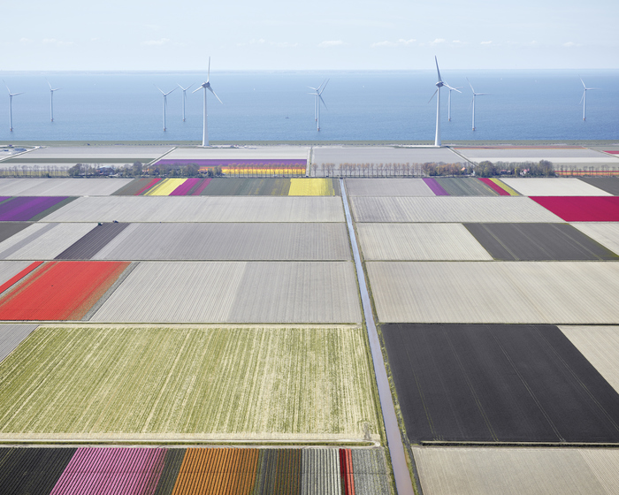 DAVID BURDENY Netherlands 2015-2016