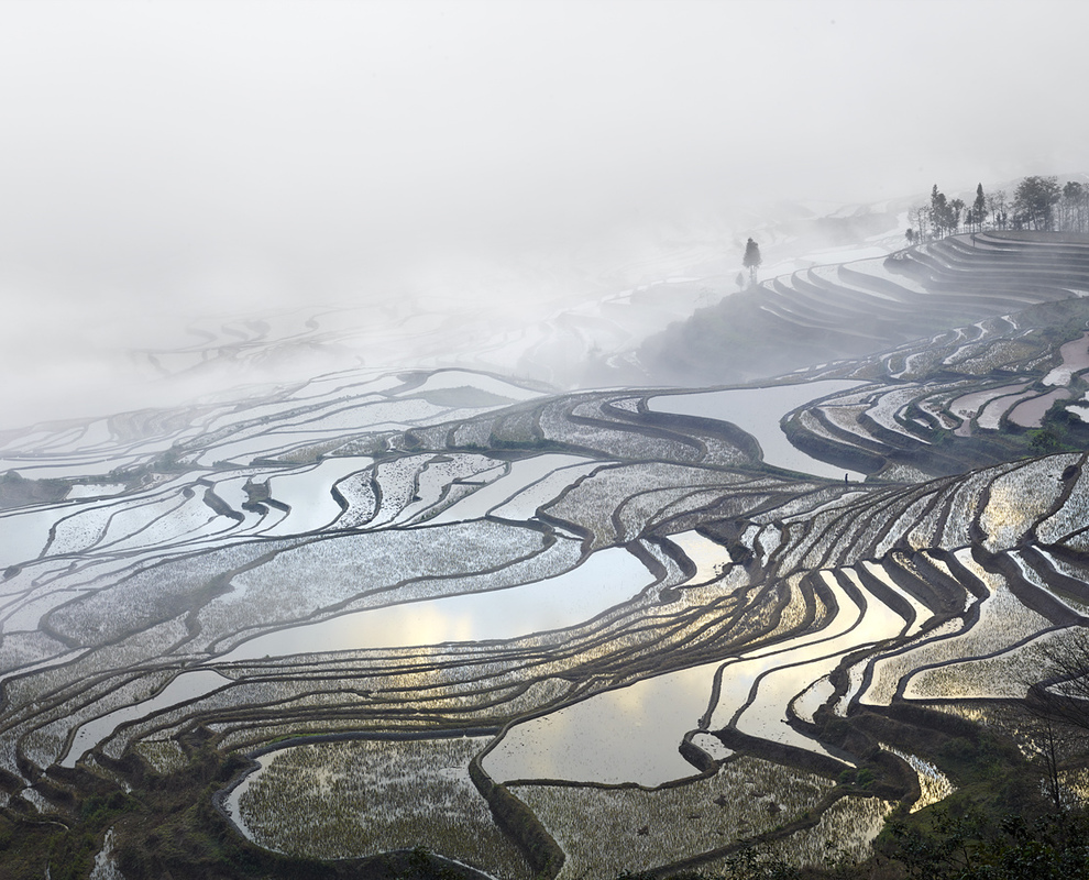 ASIA Rice Terraces, (Duoyishu), Yunnan, China, 2013