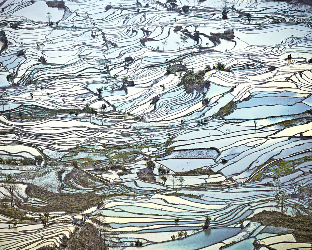 ASIA Rice Terraces, (Laohuzui II), Yunnan, China, 2013