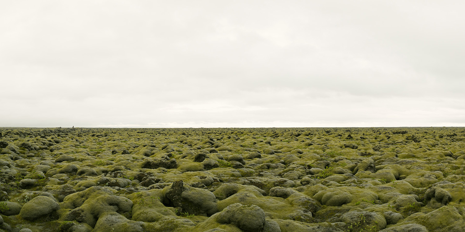 NORTH/SOUTH Moss Covered Lava Field, Iceland, 2008