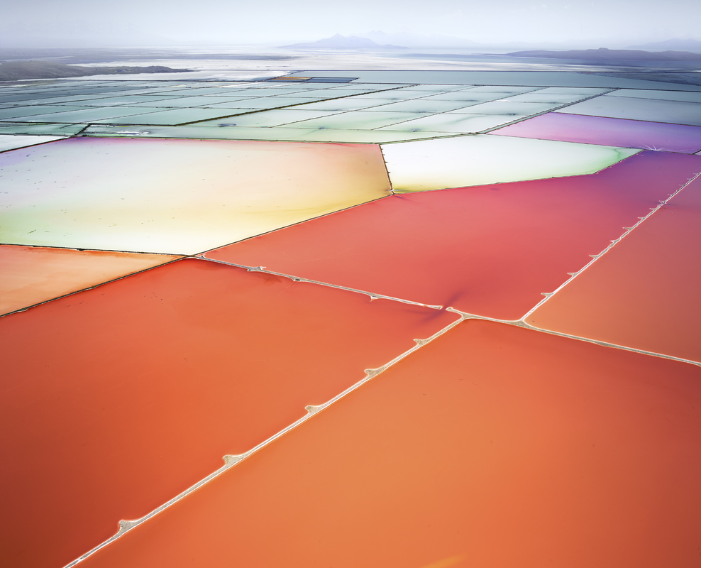SALT:  Fields, Plottings and Extracts 2015-2016 Saltern Study 10 Great Salt Lake, UT, 2015