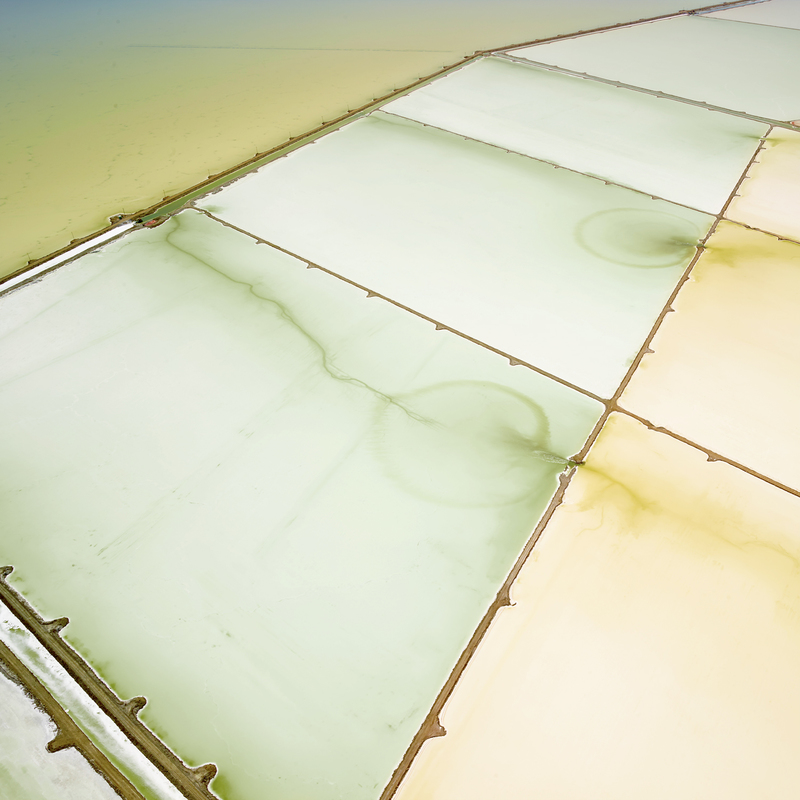SALT:  Fields, Plottings and Extracts 2015-2016 Saltern Study 05, Great Salt Lake, UT, 2015