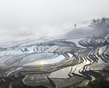 Rice Terraces, (Duoyishu), Yunnan, China, 2013