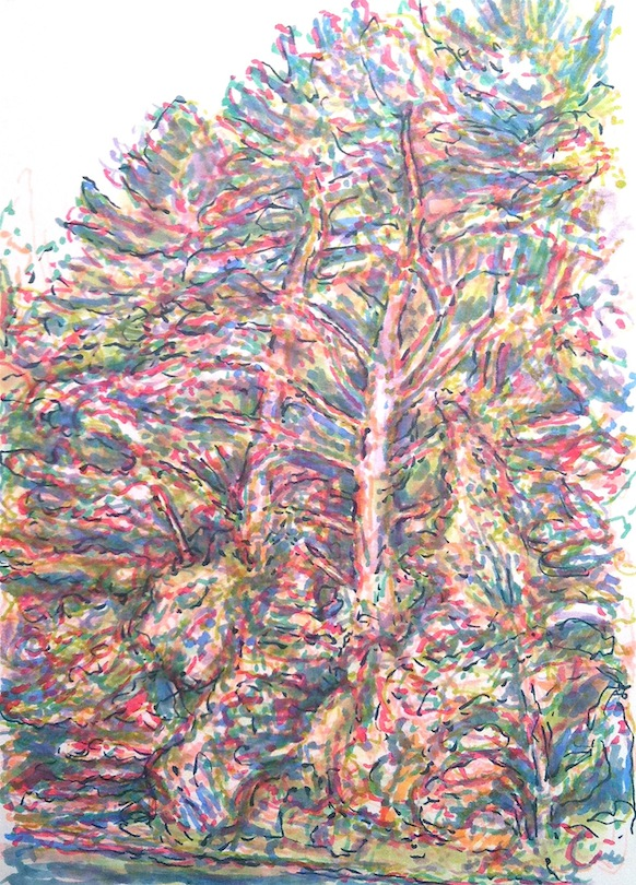 David Fratkin Drawings marker/paper