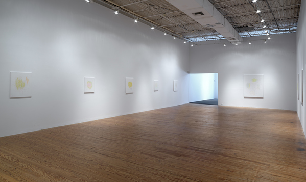 david kelley Texas Gallery Install 2016