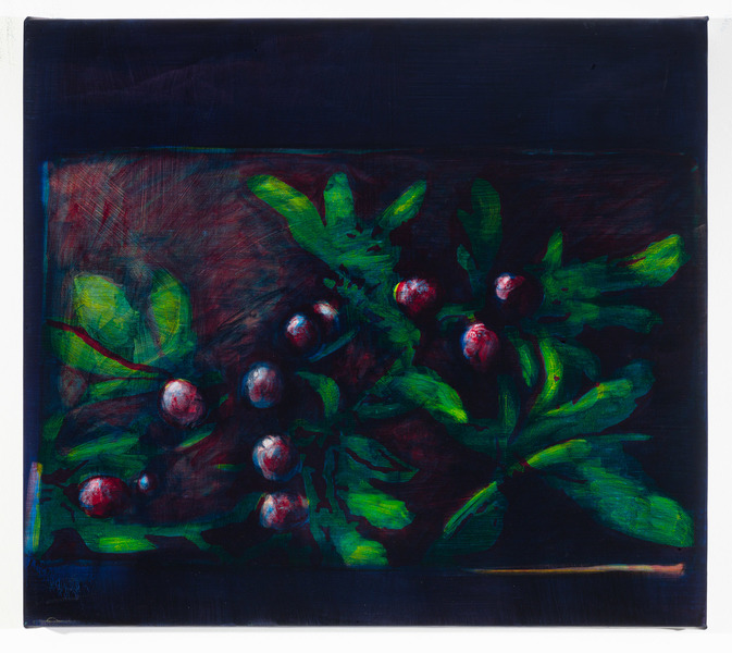 Studies for Colorful Paintings, 2017-2020 Studies for Colorful Paintings (Berries)