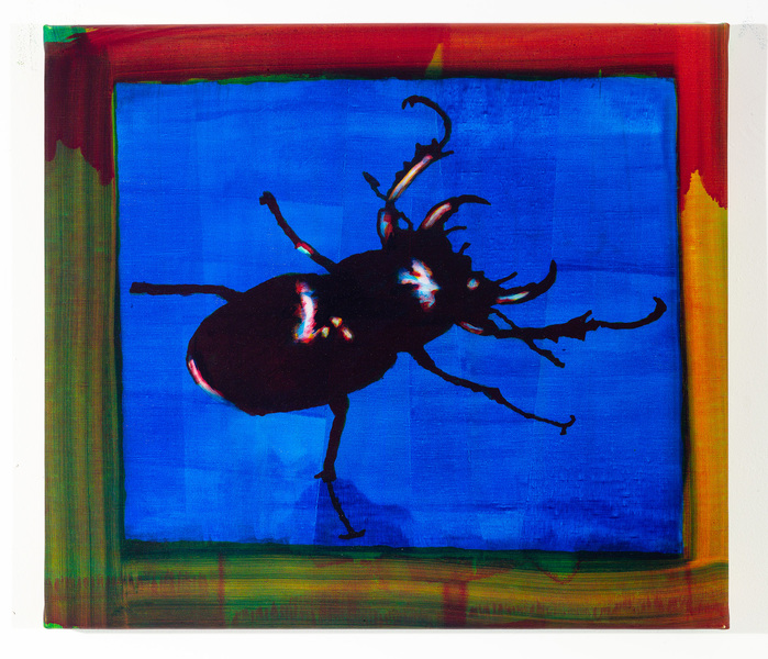 Studies for Colorful Paintings, 2017-2020 Studies for Colorful Paintings (Beetle)