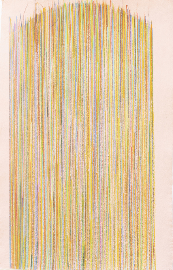 Deborah Davidson Recent Work Color pencil on handmade paper