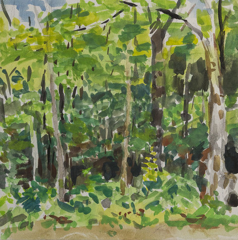 Deborah Sherman Landscapes Gouache on board