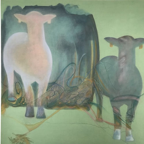 Debra Radke Sheep