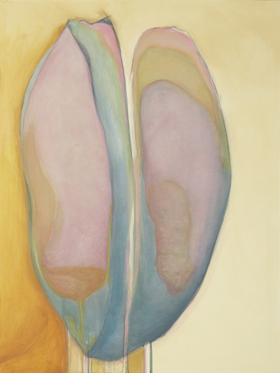 Debra Radke Pods / Pairs  Acrylic on canvas