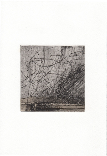 Debra Radke Botanicals Drypoint printed on Somerset with Chine-colle'