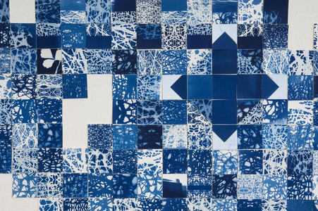 sculpture and installation cyanotypes on paper