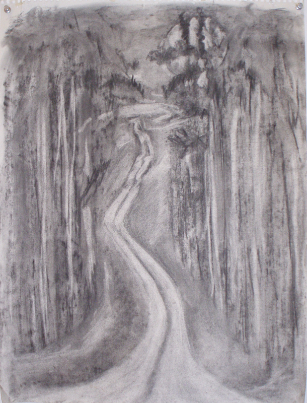 Donna Powers Drawings charcoal on paper