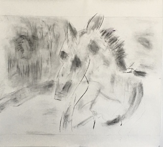 ELENI SMOLEN  Turin Horse Series 2020 Charcoal, graphite on Arches oil paper