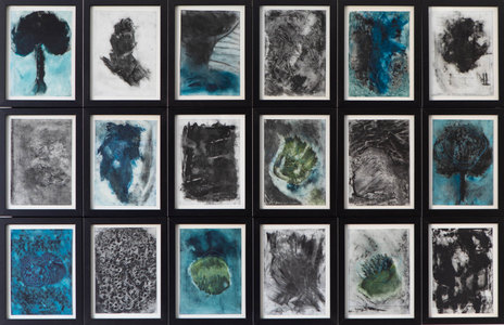 ELENI SMOLEN Surfacing Series 2020 – (18) 7x5 inch images each in a 8x6 frame mounted on one panel.