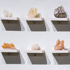 INITIAL ENCOUNTERS cast resin, selenite, quartz, shelves