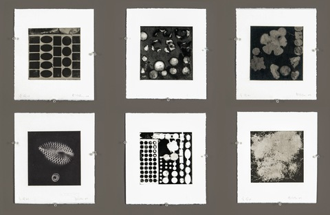 Elisabeth Haly Meyer The Quiddity boxed print project, 72 intaglio prints