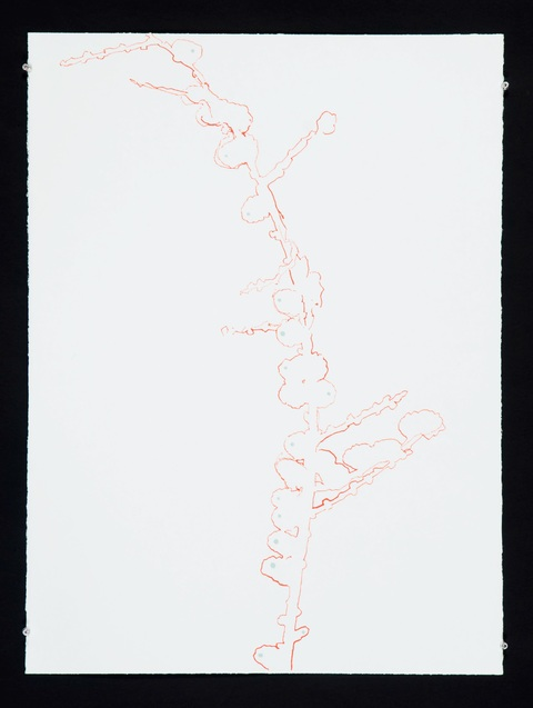 Elisabeth Haly Meyer 2009-2010 Enamel and Sumi ink on Magnani