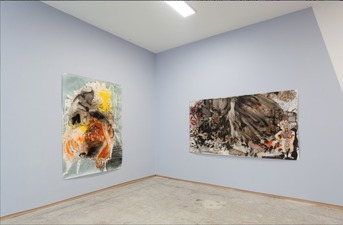 Elisabeth Condon INSTALLATION VIEWS