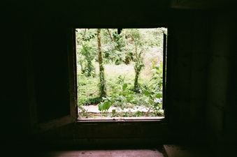 De-comodified Nature, Maharishi Window, India.