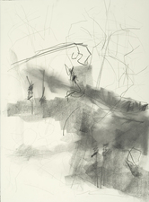 Elise Ansel Drawings Graphite on Arches Cover