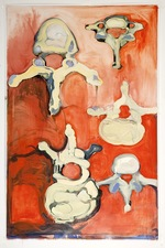 Elizabeth Riggle Vellum Studies Oil on Drafting Vellum