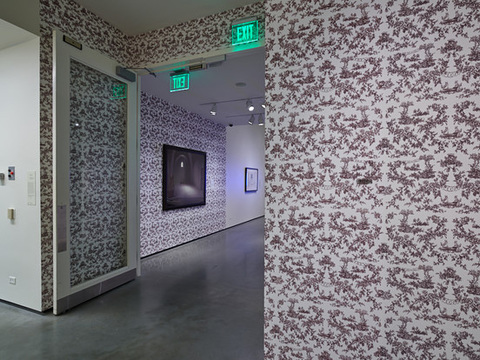 Elizabeth Duffy Maximum Security Wallpapers, Textiles and Installations 2 color silkscreen on paper