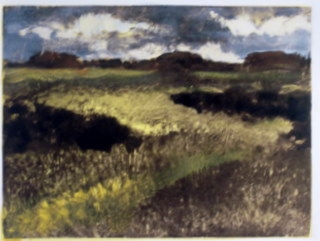 Monoprints Daytime Field