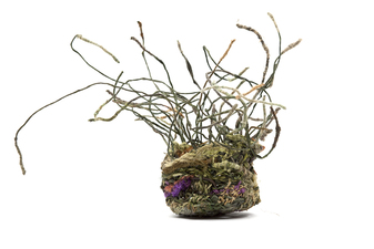 Ellen Solari Sculptural Baskets basket