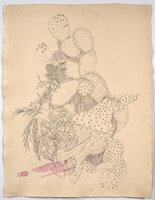 Erin Treacy 2020 Updates: Drawings & Paintings Pencil on Paper
