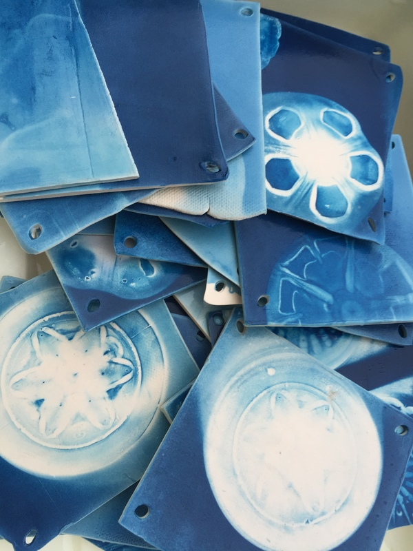 E Tyler Burton Cyanotypes porcelain and cyanotype