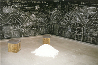Jospeh Beuys, inner space