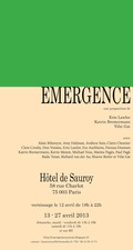 FIEROZA DOORSEN Emergence, Curated by Erin Lawler, Katrin Bremermann, Yifat Gat, Hotel de Sauroy, Paris, 2013