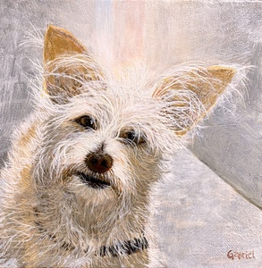 David Bottini: paintings 'for Gabriel' Pet Portraits - contact artist for details