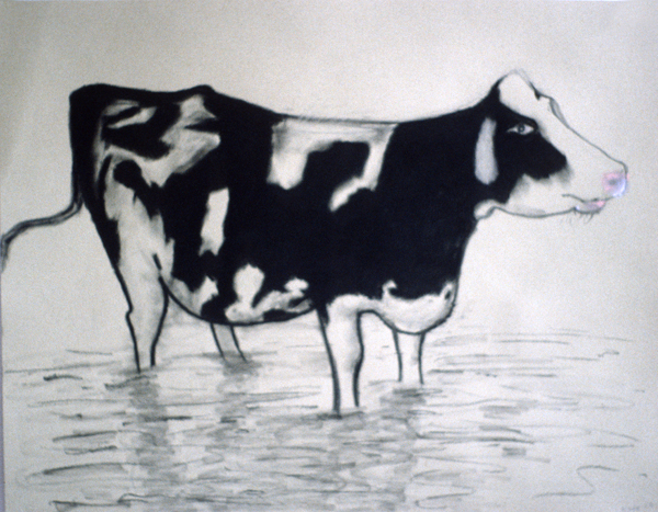 ANIMALS 1981-1988 Cow in the Creek