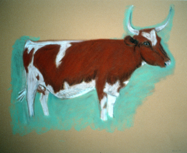 ANIMALS 1981-1988 Red and White Cow