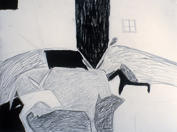 SIXTY-SIX DRAWINGS 1980's Animal Shapes & Window