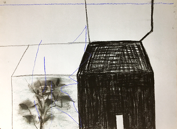 SIXTY-SIX DRAWINGS 1980's Black House & Tall Plant (with drawn blue line)