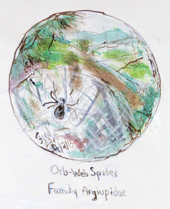 Fred Adell - Wildlife Artist Arachnids mixed media (ink, watercolor, oil pastel)