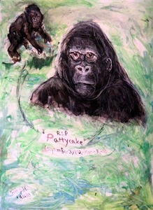 Fred Adell - Wildlife Artist Mammals - Primates Mixed Meia on Watercolor Paper