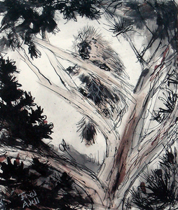 Fred Adell - Wildlife Artist Porcupines Ink on Watercolor Paper