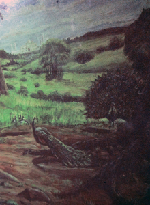 Fred Adell - Wildlife Artist Murals -- Commissions Acrylic on sheet rock