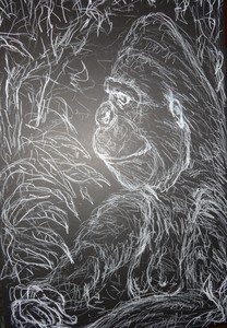 Fred Adell - Wildlife Artist Mammals - Primates white laundry marker on black mat board