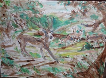 Fred Adell - Wildlife Artist Deer Mixed Media (Ink, watercolor, tempera) on watercolor paper