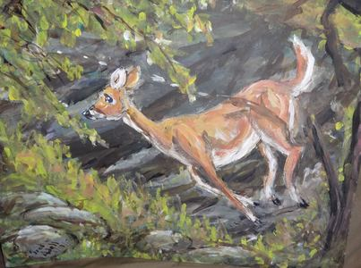 Fred Adell - Wildlife Artist Deer  Mixed Media (ink, watercolor, tempera) on primed cardboard