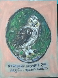 Fred Adell - Wildlife Artist Owls Mixed Media (Ink, watercolor, tempera) on primed (gesso) cardboard