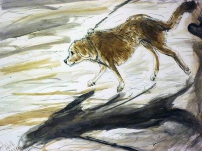Fred Adell - Wildlife Artist Dogs - Domesticated mixed media  (sepia & India Ink) on paper
