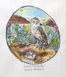 Fred Adell - Wildlife Artist Owls Mixed media (ink, watercolor,tempera,oil pastel)