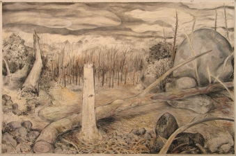 Gabrielle Barzaghi                     DRAWINGS Dogtown (Woodlands) Charcoal, graphite, conte, and pastel